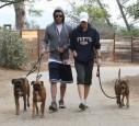 Justin Timberlake und Jessica Biel gehen spazieren