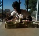 50 Cent scheint sein ganzes Geld ja wirklich gut zu gebrauchen.